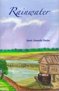 Rainwater - book cover